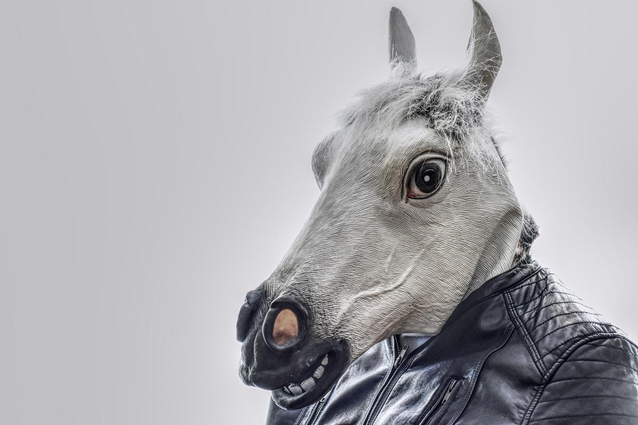 foto postavy s koňskou hlavou