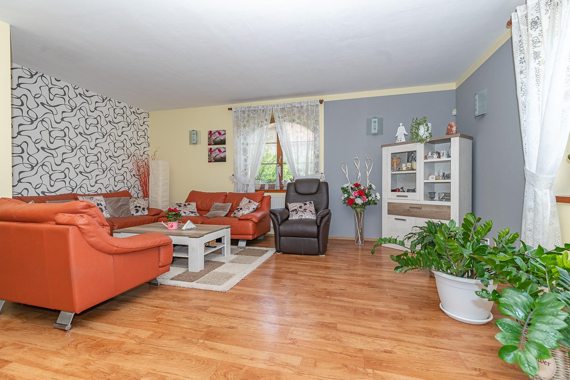 obývací pokoj s TV, oknem, gauči, konefernční stolek a květiny