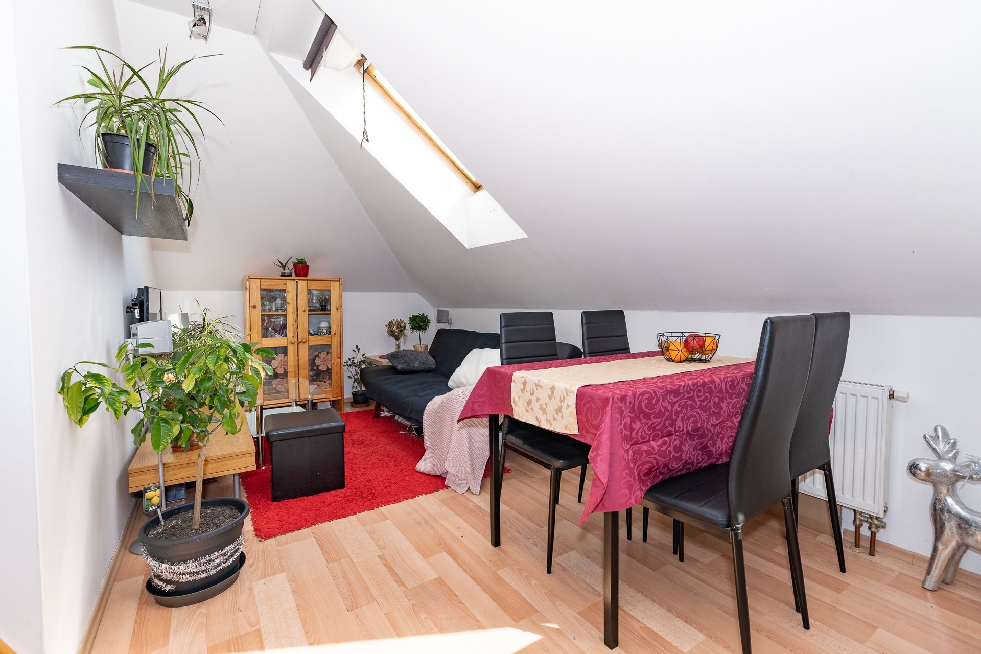 obývací a jídelní kout, jídelní stůl, pohovka, strěšní okno a květina