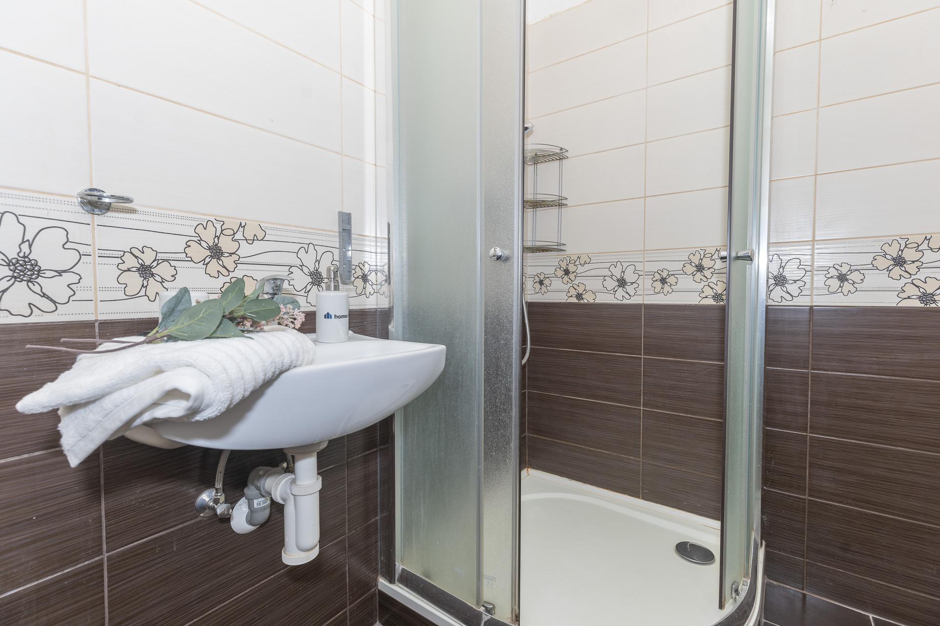 koupelna se sprchovým koutem a dekoracemi